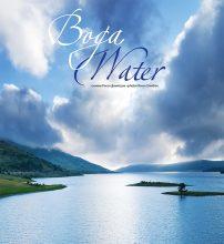 Вода–корица