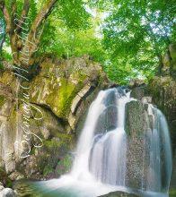 Водопади–корица